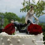 Svatba Soláň - svatební dort detail